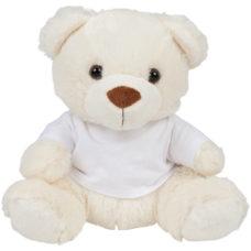 Bear in a t-shirt